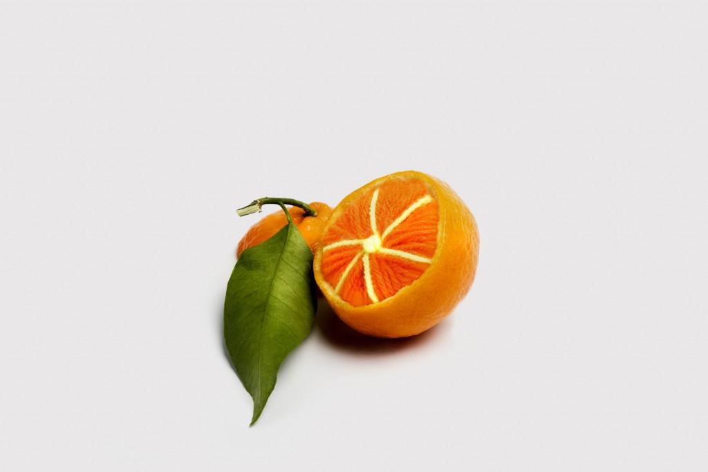woolfruit2a